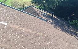 >Wanneer is het tijd voor nieuwe dakpannen?